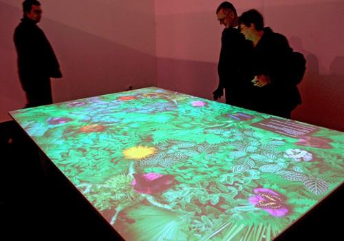 Interaktiver Schmetterlingstisch, Palmengarten