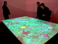 Interactive Butterfly Table