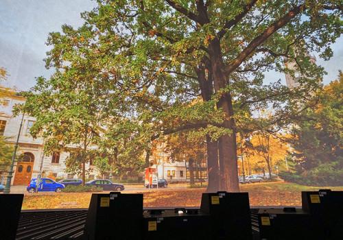 Projektionsdom Der WTD 81 In Greding Mit Testprojektion Während Inbetriebnahme